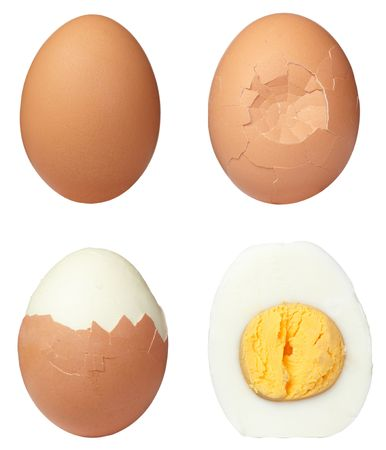 boiled: various eggs on white background. each one is in full camera resolution