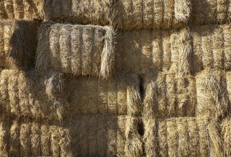 agriculture hay bale close up Stock Photo - 6590962