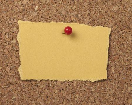 tack board: portarretrato de papel de nota a bordo de corcho