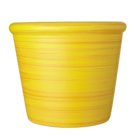 close up of   flowerpot  on white background Stock Photo - 7832847
