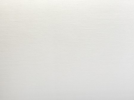 blank canvas: close up of a white textured paper background Stock Photo
