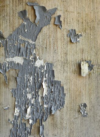 close up of an aged wooden background photo