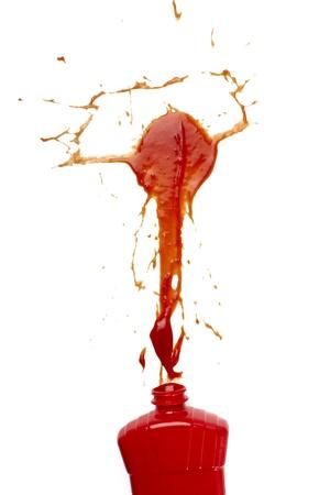 fleck: detalle de las manchas de salsa de tomate