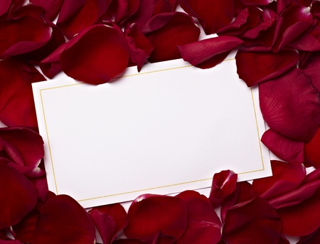 close up of greeting card dwith rose petals decoration Stock Photo - 8618971