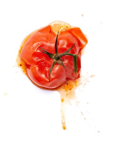 rotten: close up of  a splattered tomato on white background