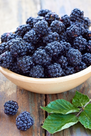 black berry: close up of bramble fruit