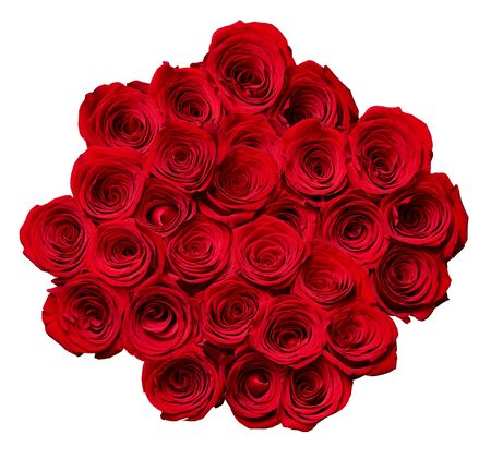 stretta di rose su sfondo bianco
