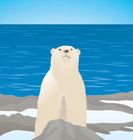 Vector Illustration of a polar bear standing at the sea shore while the ice is melting.