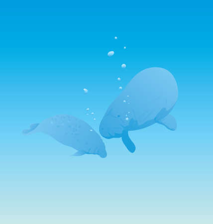 Vector Illustration of arctic seal swimming under water in the ocean in search of food