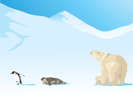 Vector Illustration of Antarctic animals walking on the snow. Polar bear, Arctic seal and a Penguin