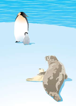 Vector illustration of polar animals, Penguin and Arctic Seals on sea shore Illustration