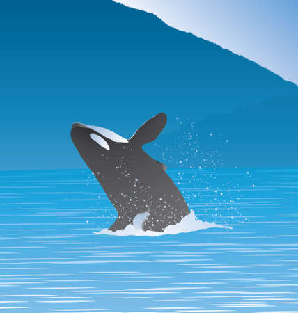 Vector Illustration of whale jumping out of water in the middle of the ocean.