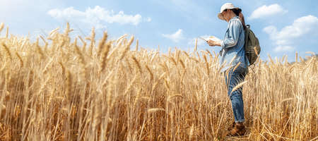 Asian young woman with backpack reading a map in barley field on summer. Travel and Vacation concept.