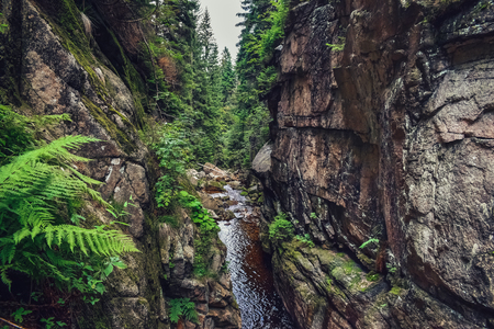 Creek between stone walls creating crevice. Mountains on the south of Poland.