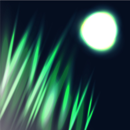 Abstract background imitating growing lawn grass in moonlight Stock Photo