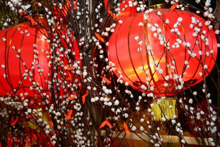intentional: Chinese New Year Lantern decoration with bushy willow tree. Intentional selective focus, narrow depth of field. Stock Photo