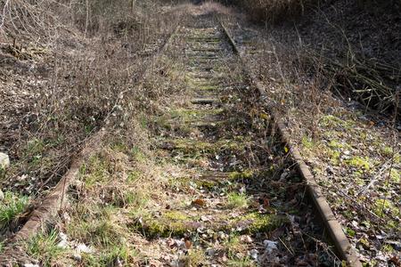Old, overgrown railway tracks Reklamní fotografie