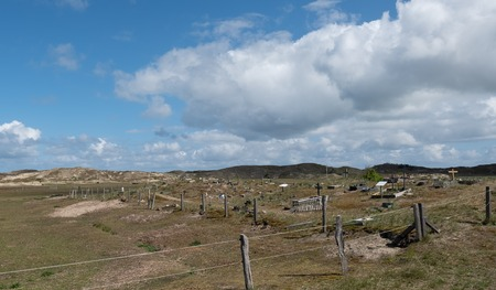 Old animal cemetery on Norderney with dune landscape in the background