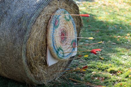 Detail of a target attached to a bale of straw with arrows stuck in it