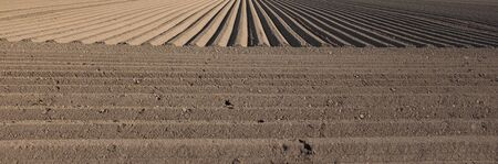 Plowed earth with exact geometric lines and vanishing point