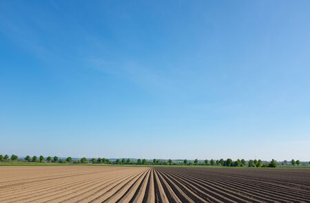 A field plowed with deep furrows