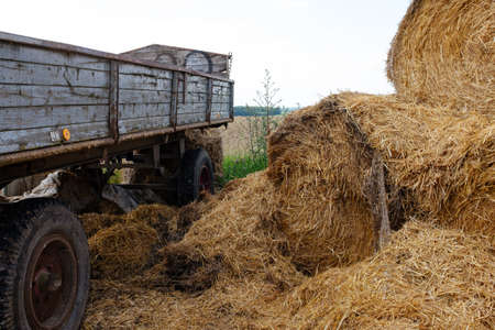 Rural scene with a trailer and straw lying next to it.