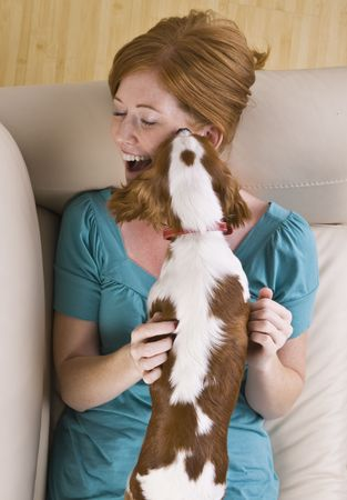 woman on couch: A young woman lying on a couch and being licked by a dog that she is holding.  She is smiling and has her eyes closed. Vertically framed shot. Stock Photo