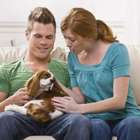petting: A young and attractive couple holding and petting a dog. Square framed photo. Stock Photo