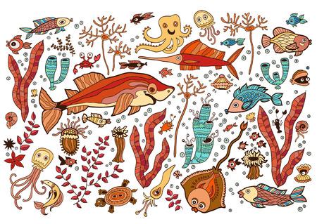 Colored Set of elements on the tropic sea life. Marine collection: batoidea fish, jellyfish, shark, swordfish, corals, turtles, shrimp, clam, shell, squid, crab.