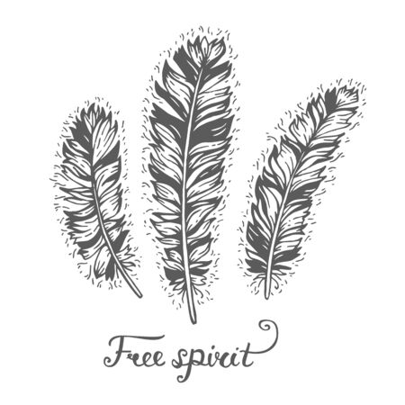 spirit: Poster with hand drawn 3 decorative ethnic feathers with text Free spirit. Freedom concept. Boho and hippie style. American indian motifs. Vector illustration. Tribal theme background with feathers. Illustration