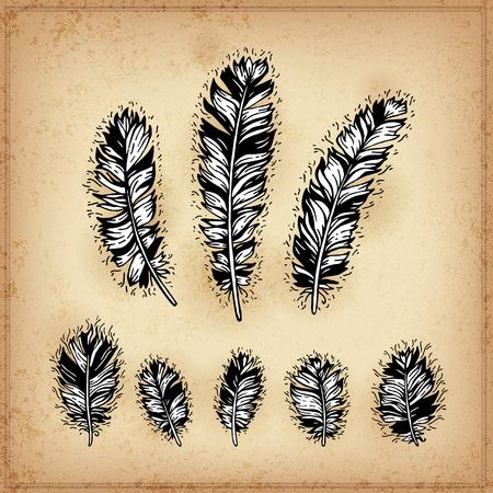 Ensemble de plumes dessin d'encre à la main en noir et blanc. Vector illustration. Ensemble de plumes tribales griffonnage. Éléments de style natif pour carte de voeux et carte postale, henné et conception de tatouage. Vecteurs