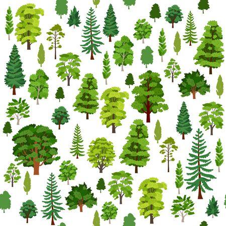 Autumn forest trees pattern. A Woodland background Çizim