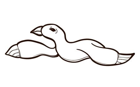 Seagull in flight isolated. Coloring book