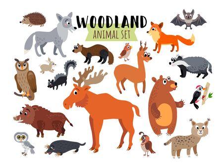 Woodland Forest Animals set isolated on white