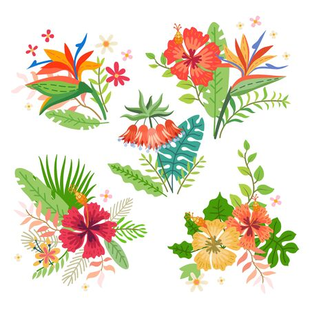 Collection of tropical flowers. Vector cartoon rainforest floral elements isolated on white background. Brazil jungle flora in flat style. Summer Bouquet of tropic flowers leaves. Aloha set.