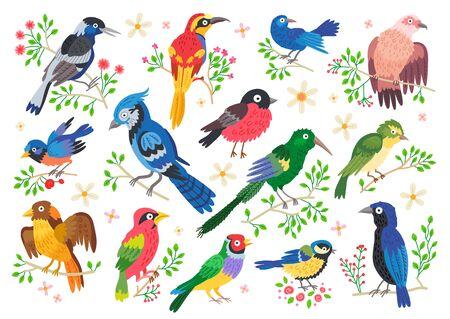 Set of forest birds. Vector cartoon songbirds