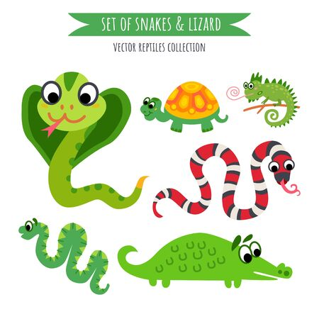 Vector set of snake and lizard isolated on white.