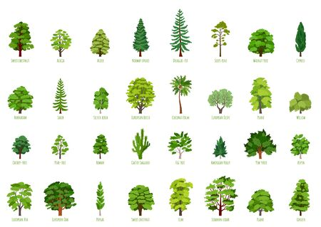 Big Vector cartoon set with trees isolated Векторная Иллюстрация