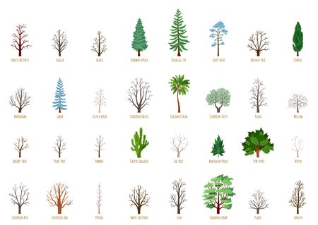 Big Vector cartoon set with winter trees isolated