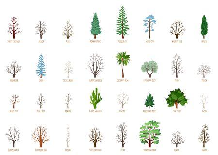 Big Vector cartoon set with winter trees isolated Banco de Imagens - 150275295