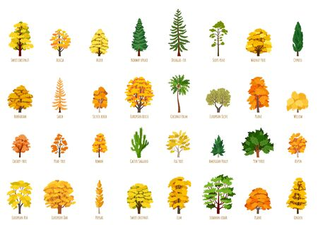 Big Vector cartoon set with autumn trees