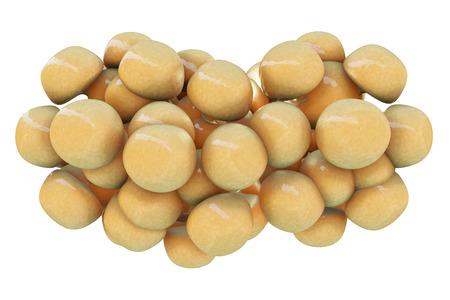 gordos: Las c�lulas de grasa - 3d rindi� la ilustraci�n