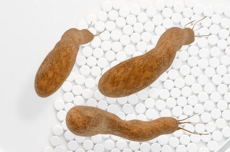 ulceras: Helicobacter pylori - 3d rindi� la ilustraci�n