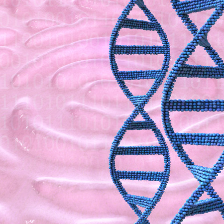 Dna and fingerprint - 3d rendered illustration illustration