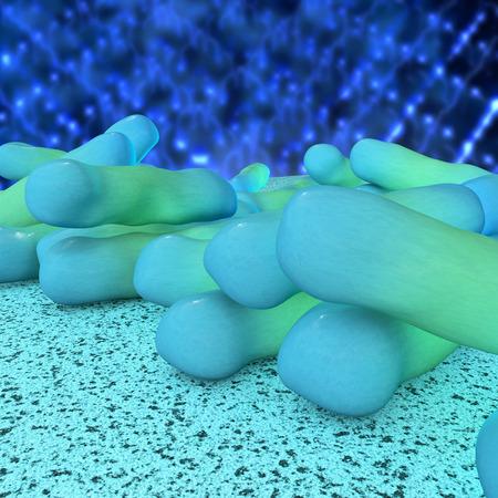 Shigella dysenteriae bacteria - 3d rendered illustration