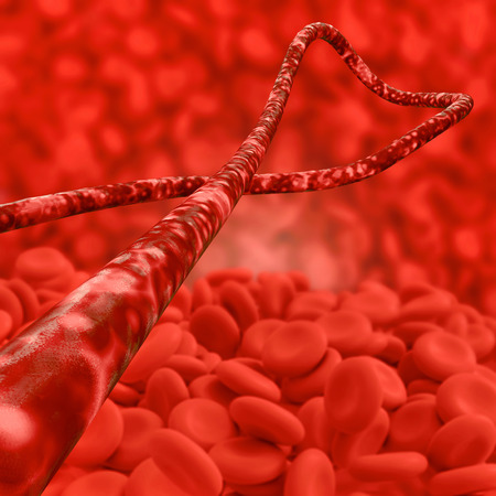 ebola: Ebola virus and blood cells - 3d rendered illustration