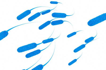 E.coli bacteria - 3d rendered illustration
