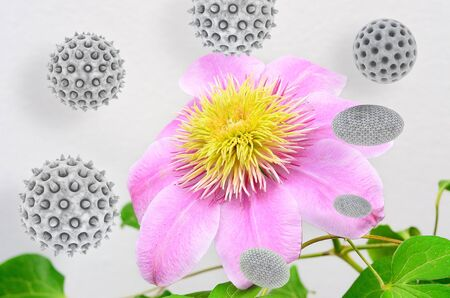 flourished: Pollen - 3d rendered illustration