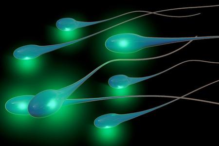 espermatozoides: Esperma - 3d rindió la ilustración
