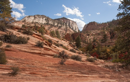 high plateau: Zion National Park, located in Utah, is an intensely beautiful 229 square mile place featuring high plateaus and a deep narrow canyon. This image was taken during the Fall in the high plateau area. The spectacular geology adorned with Fall colors was simp Stock Photo